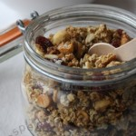 granola_canneberges
